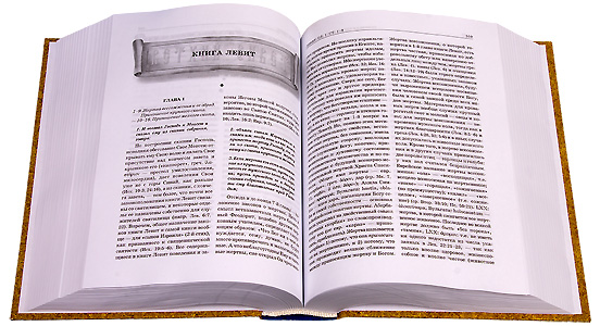 essay bible Essays and criticism on barbara kingsolver's the poisonwood bible - critical essays.